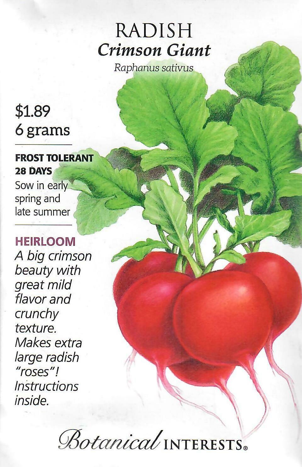 Radish Crimson Giant Botanical Interests