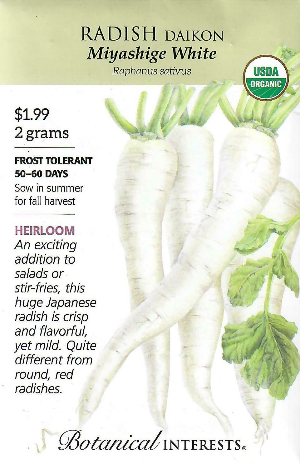 Radish Daikon (white) Org Botanical Interests