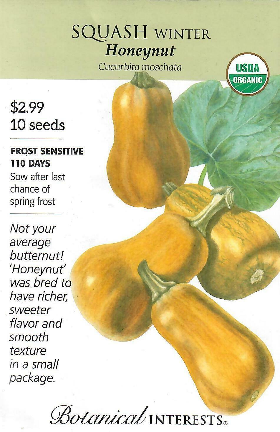 Squash Winter Honeynut Org Botanical Interests