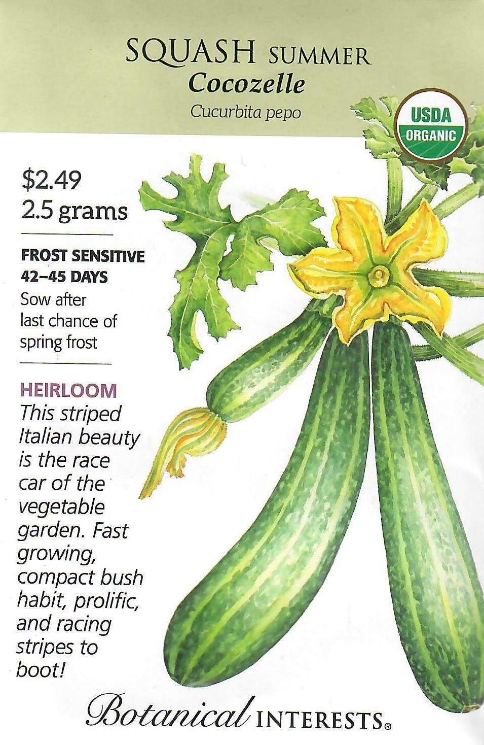Squash Summer Cocozelle Org Botanical Interests