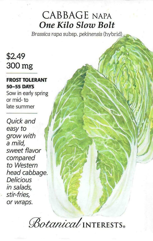 Cabbage Napa One Kilo hybrid Botanical Interests
