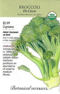 Broccoli Di Cicco Org Botanical Interests