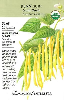 Bean Bush (yellow) Gold Rush Org Botanical Interests
