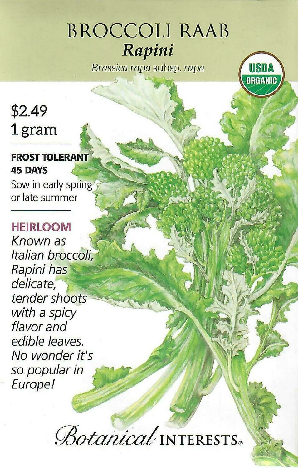 Broccoli Raab Rapini Org Botanical Interests