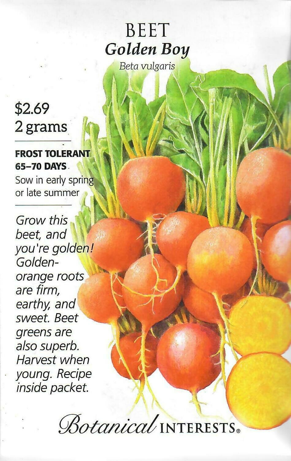 Beet (gold) Golden Boy Botanical Interests