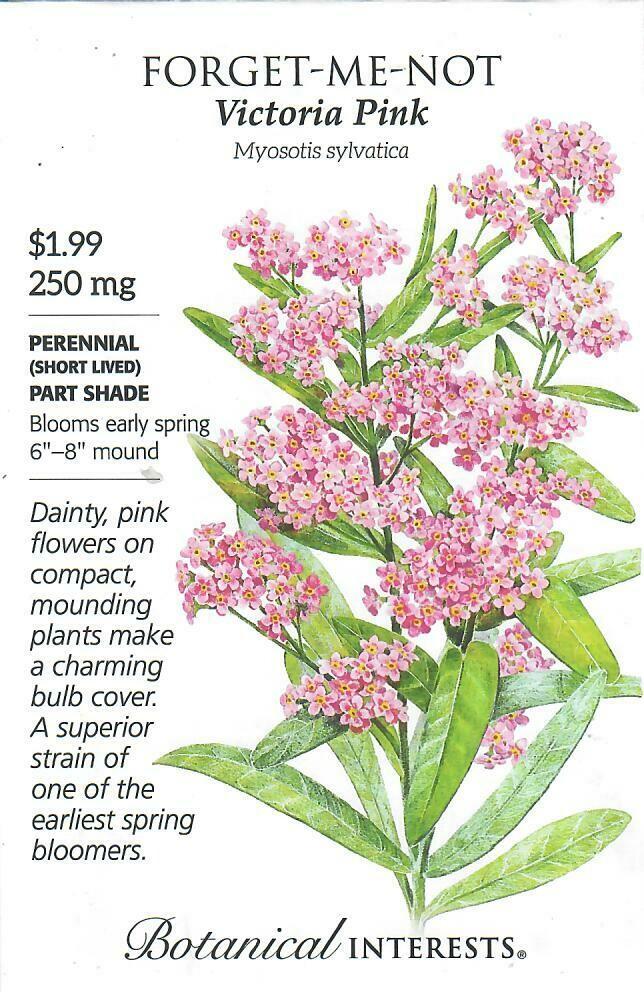 Forget-Me-Not Victoria Pink Botanical Interests