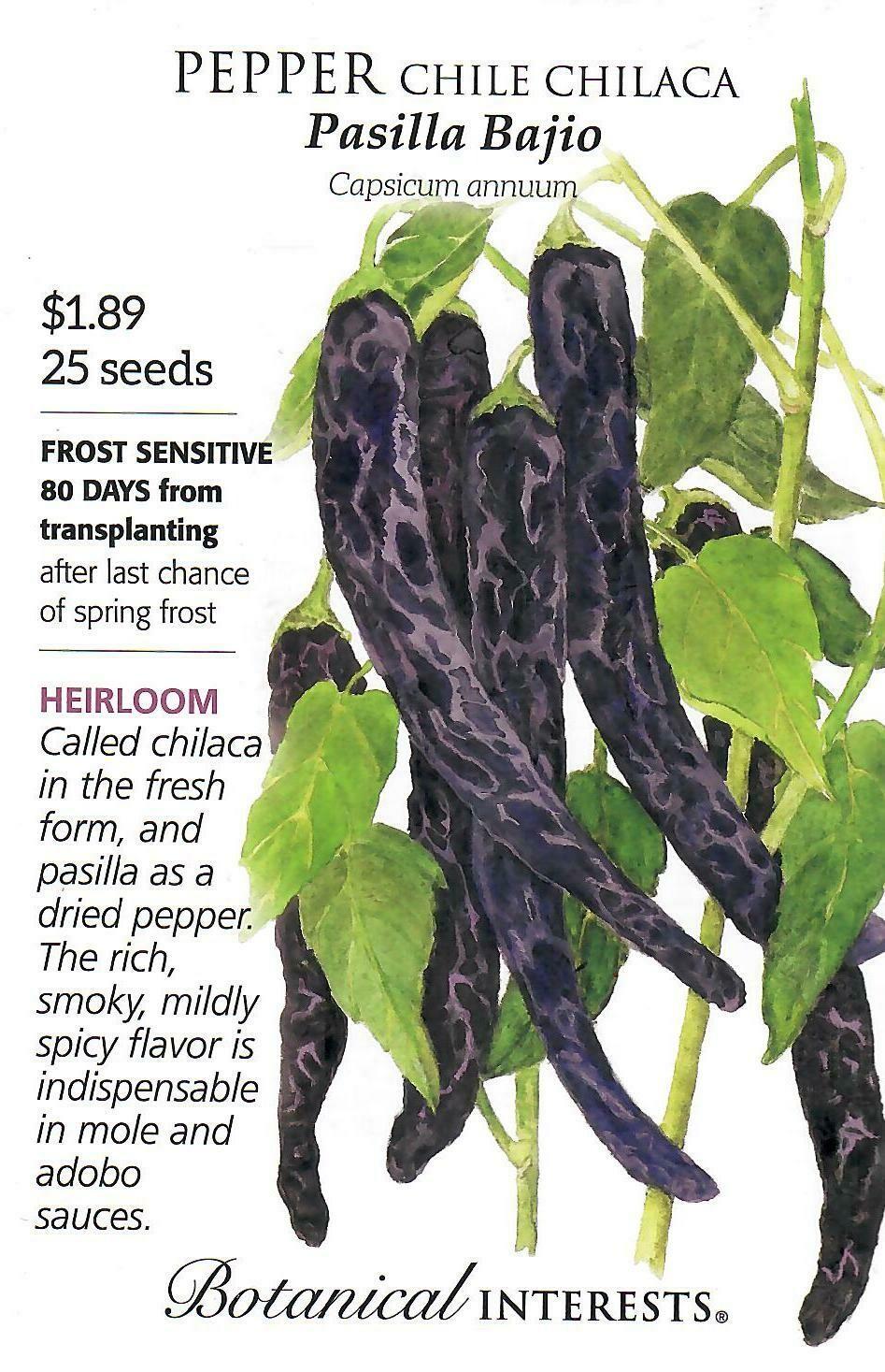 Pepper Chile Chilaca Pasilla Bajio Botanical Interests
