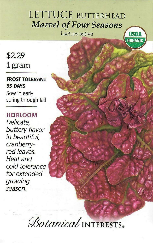 Lettuce Butterhead Marvel Org Botanical Interests
