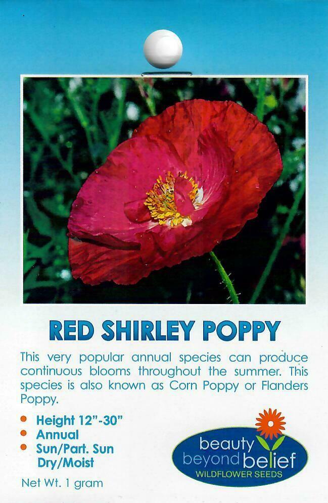 Poppy - Red Shirley WF