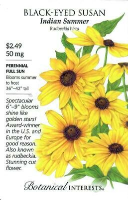 Black-Eyed Susan Indian Summer Botanical Interests