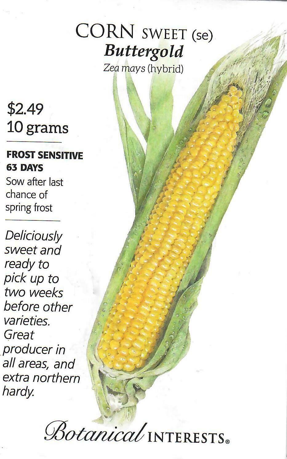 Corn Swt (yellow) Buttergold Botanical Interests