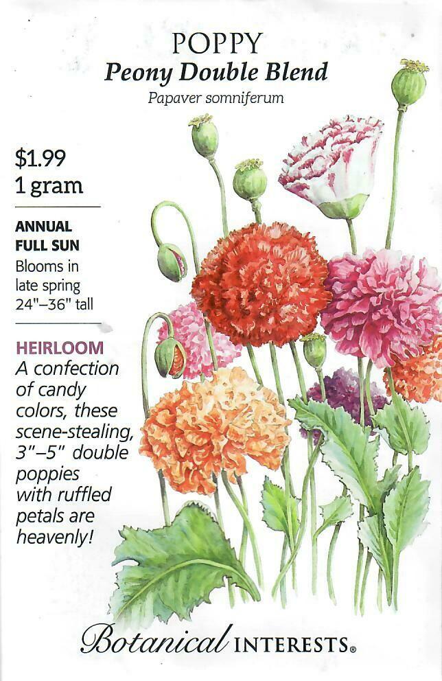 Poppy Bread Peony Double Blend Botanical Interests