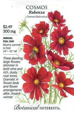 Cosmos Rubenza Botanical Interests