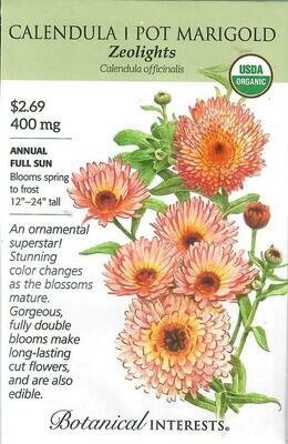 Calendula Zeolights Org Botanical Interests