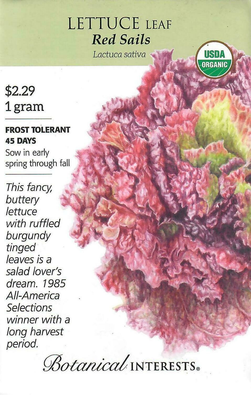 Lettuce Leaf Red Sails Org Botanical Interests