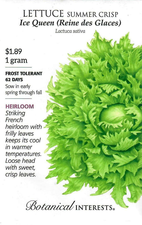 Lettuce Summer Crisp Ice Queen Botanical Interests