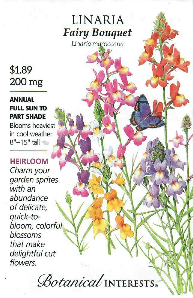 Linaria Fairy Bouquet Botanical Interests