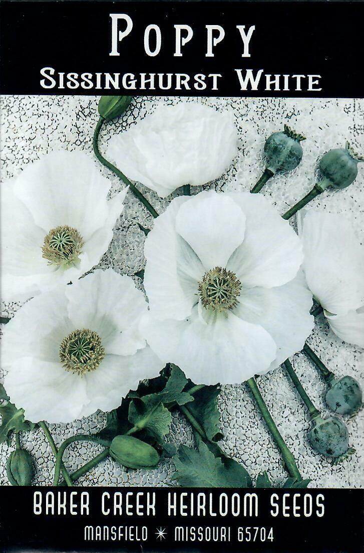 Poppy - Sissinghurst White BC