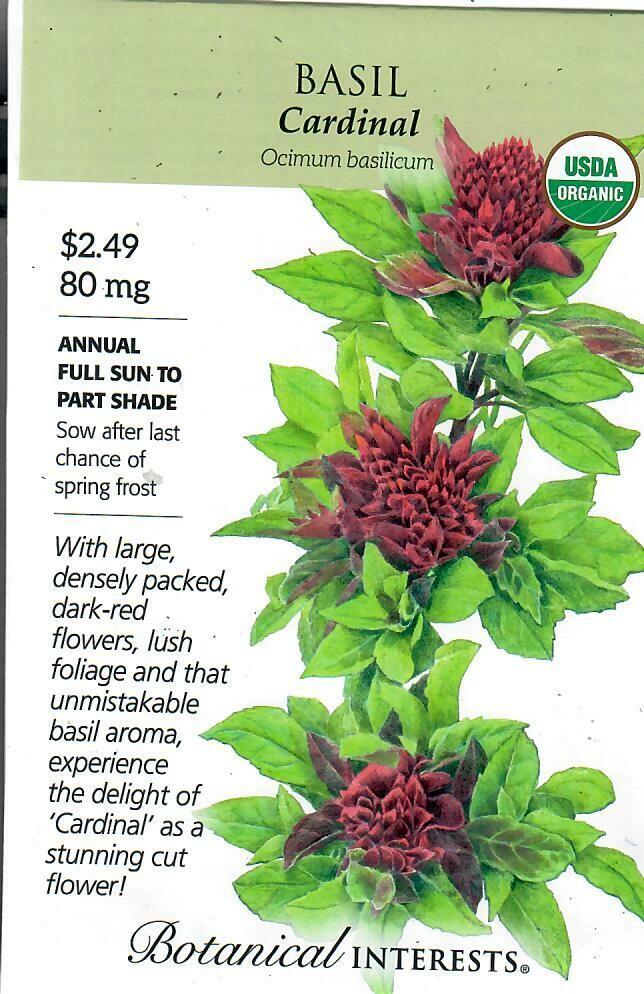 Basil Cardinal Org Botanical Interests