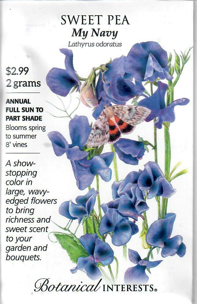 Sweet Pea My Navy Botanical Interests