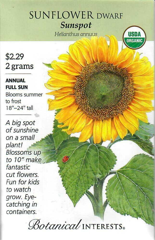 Sunflower Dwf Sunspot Org Botanical Interests