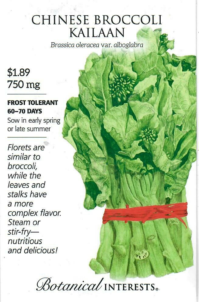 Broccoli Chinese Kailaan Botanical Interests