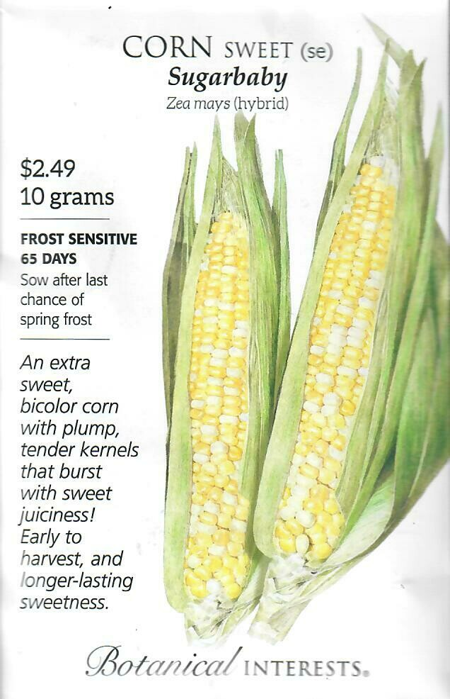Corn Swt (bicolor) Sugarbaby hybrid Botanical Interests