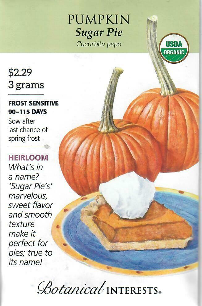 Pumpkin Sugar Pie Org Botanical Interests