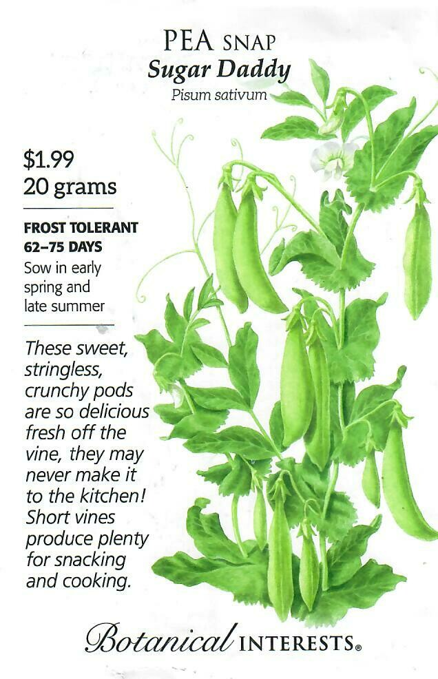Pea Snap Sugar Daddy Botanical Interests