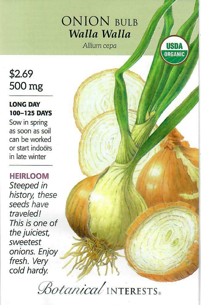 Onion Bulb (ylw) WallaWalla (LD) Org Botanical Interests