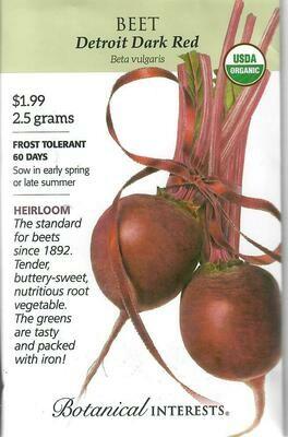 Beet (red) Detroit Dark Org Botanical Interests