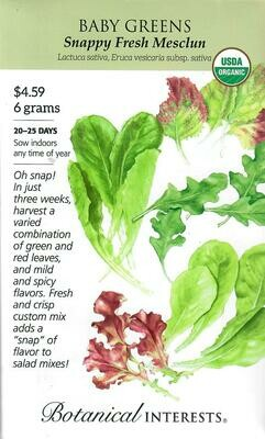 Baby Greens Mesclun Snappy Org LG Packet Botanical Interests