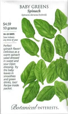 Baby Greens Spinach LG Packet Botanical Interests