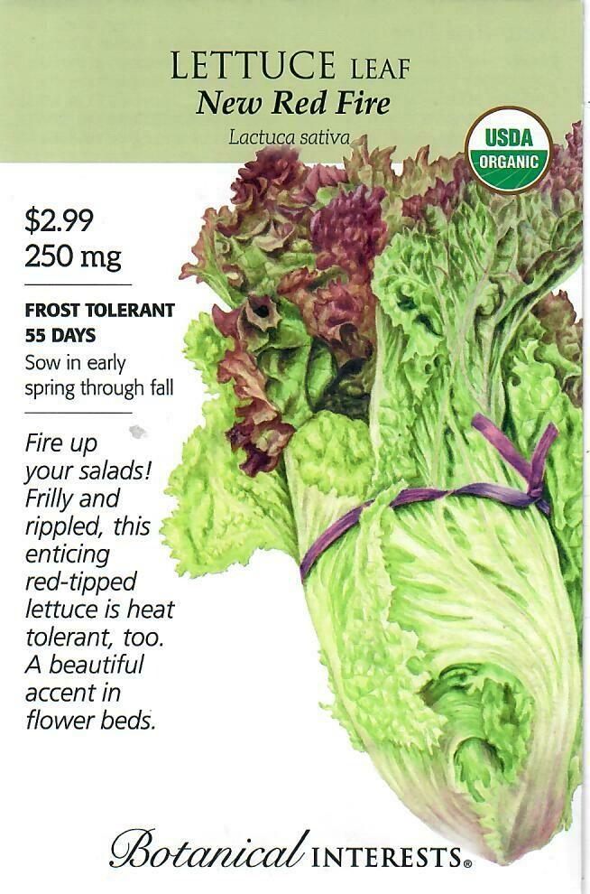 Lettuce Leaf New Red Fire Org Botanical Interests