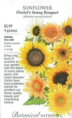Sunflower Florist's Bouquet hybrid LG Packet Botanical Interests