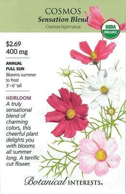 Cosmos Sensation Blend Org Botanical Interests