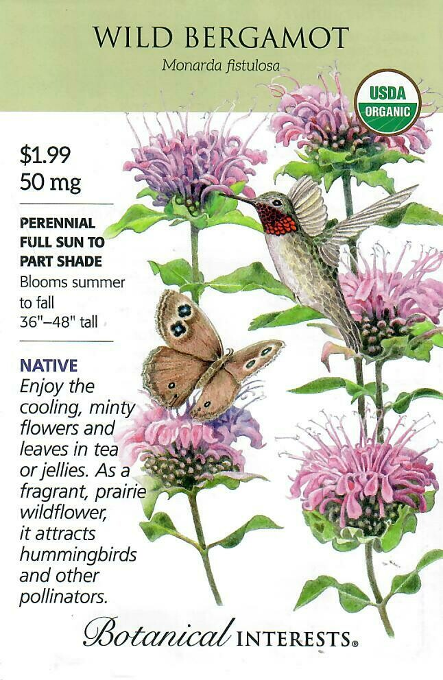 Wild Bergamot Org Botanical Interests