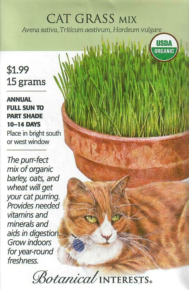 Cat Grass Mix Org LG Packet Botanical Interests
