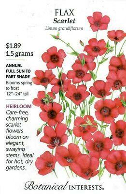 Flax Scarlet Botanical Interests