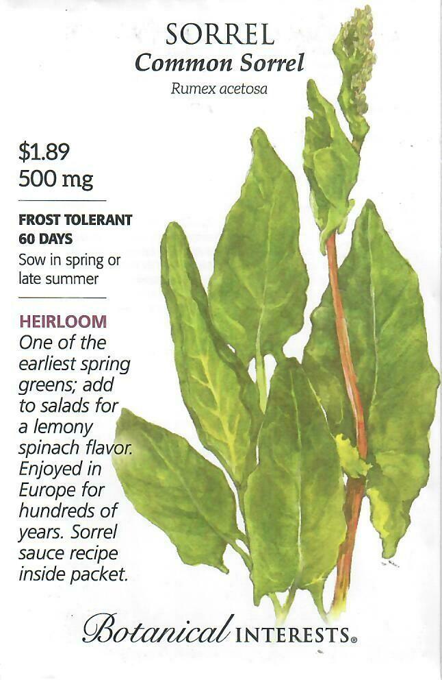 Sorrel Common Botanical Interests