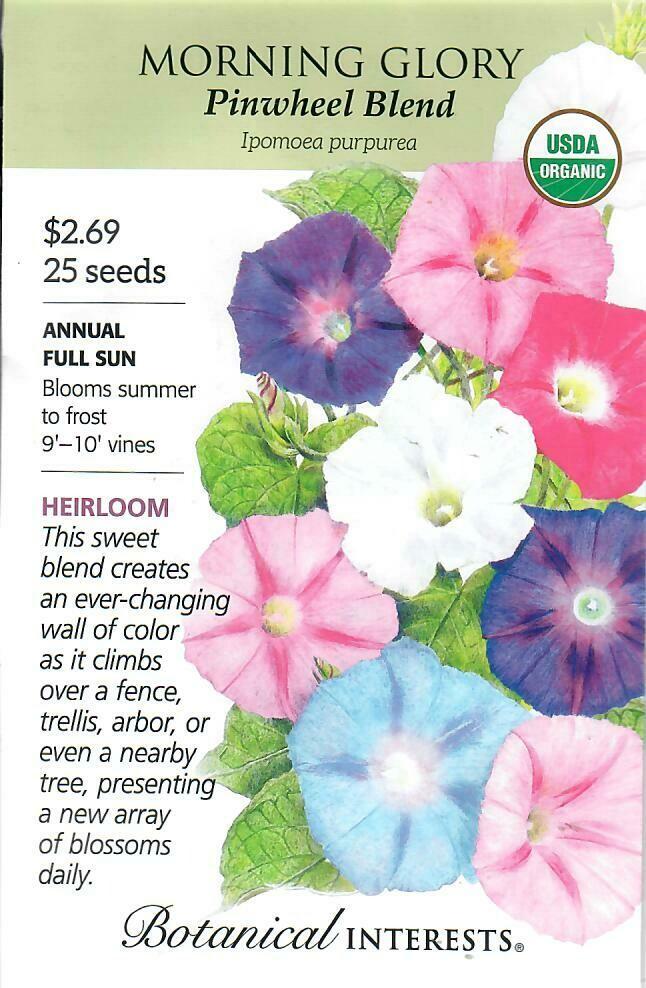 Morning Glory Pinwheel Blend Org Botanical Interests