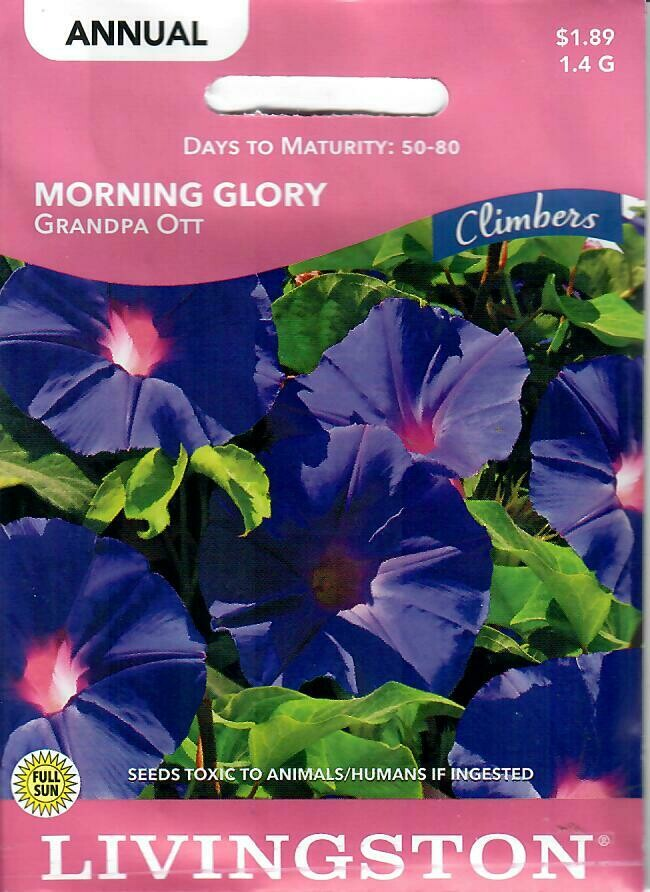 MORNING GLORY - GRANDPA OTT