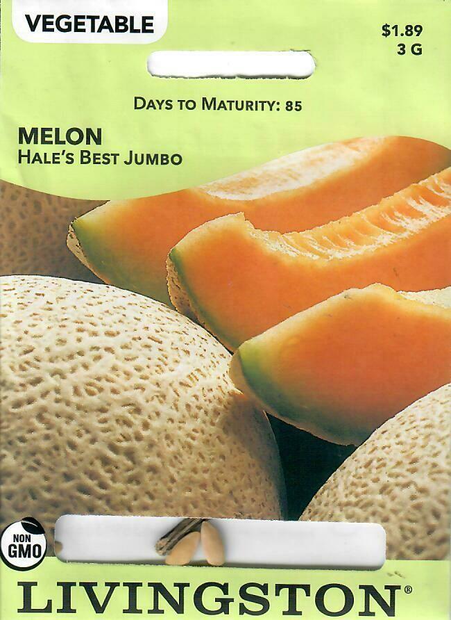 MELON - HALE'S BEST JUMBO