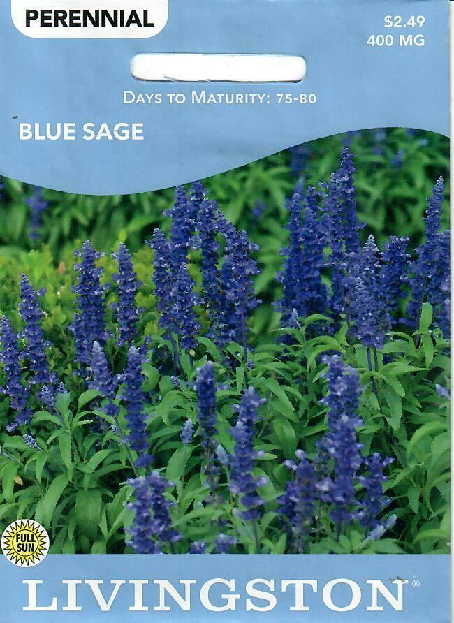 SAGE - BLUE