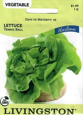 LETTUCE - HEIRLOOM - TENNIS BALL