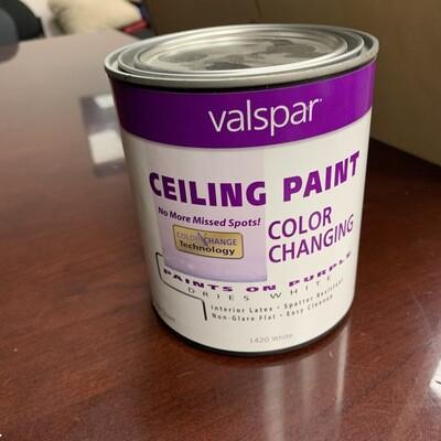 Valspar Color Changing Ceiling Paint