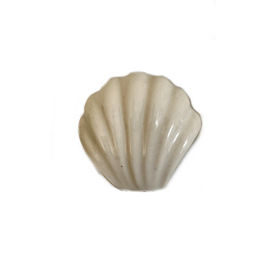 Ceramic Sea Shell Knobs 16A