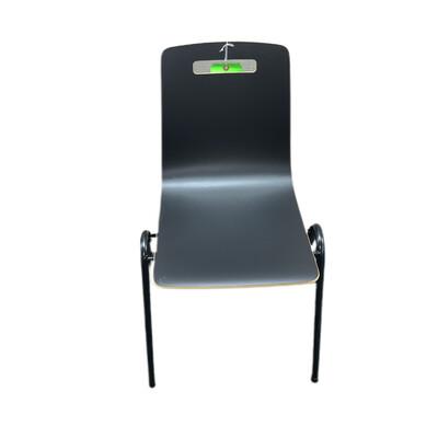 Grand Rapids Side Chair