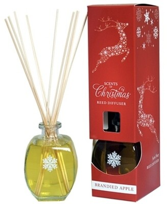 Scent Shop Scents of Christmas Brandied Apple Reed Diffusuer