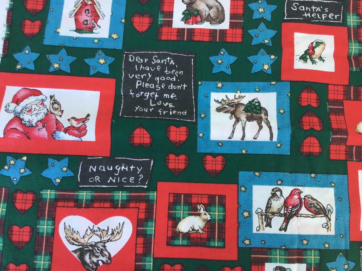 Fabric: Christmas Outdoors / Cotton